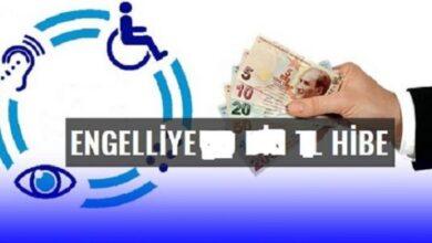 صورة رابط التسجيل على منحة الإعاقة المقدمة من الحكومة التركية