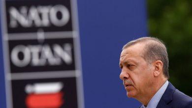 صورة الناتو يرحب بجهود تركيا في استضافة السوريين.. إليكم التفاصيل