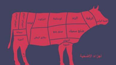 صورة ما أفضل قطعة لحم صحيا للأكل من أضـ.ـحية العيد؟ وبعد كم ساعة من الذبـ.ـح ينصح بتناول اللحم؟