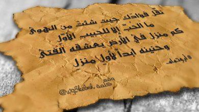 صورة ما الحب إلا للحبيب الأول.. فنان عربي تزوج 15 مرة ثم عاد لزوجته الأولى.. ماذا قال؟