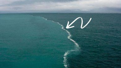 صورة بينهما برزخ لا يبغيان.. لماذا لا تمتزج مياه المحيط الأطلنطي مع المحيط الهادئ.. هل كنت تعلم هذا؟